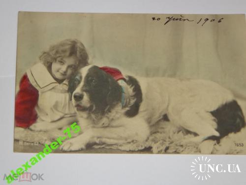 2.Собака.Собаки.Ньюфаундленд.Фото на память.