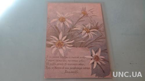 Эндаурова. Серия цветы и поговорки. 26