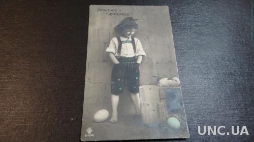Христос Воскресе. Кролик. Пасхальные яйца.Письмо в Бобруйск. Поручику. Письмо Левицкому.