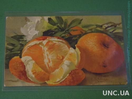 Кляйн. натюрморт. Апельсины.