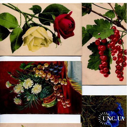 натюрморт. Цветы, розы и др. 5 открыток.