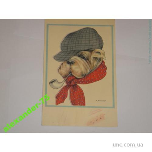 Собака.Бульдог с трубкой.Реклама.ШоколадMartougin.