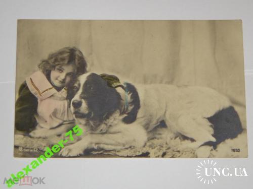 Собака.Собаки.Ньюфаундленд.Фото на память.