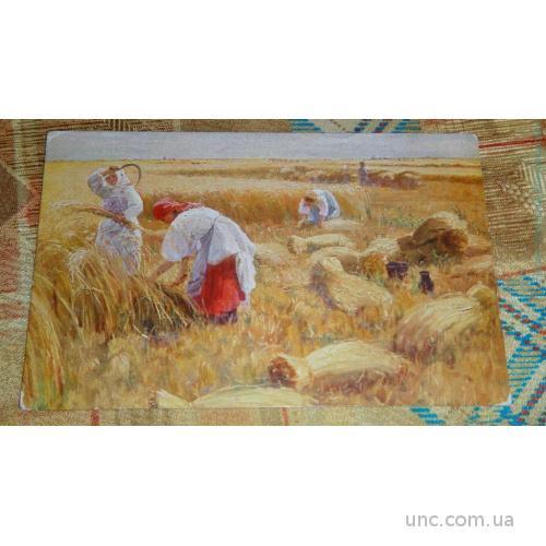 Сычков. Страда.Ришар. Сбор пшеницы.