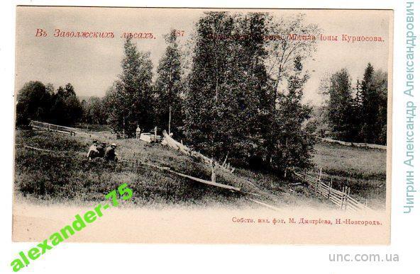 Заволжские леса.№187.Могила Ионы Курносова.