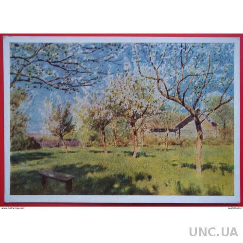 10813 И.Левитан. Цветущая яблоня