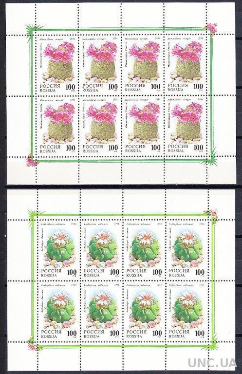 Россия 1994 флора цветы кактусы