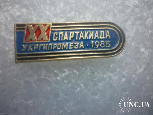 20 Спартакиада Гипромеза. 1985