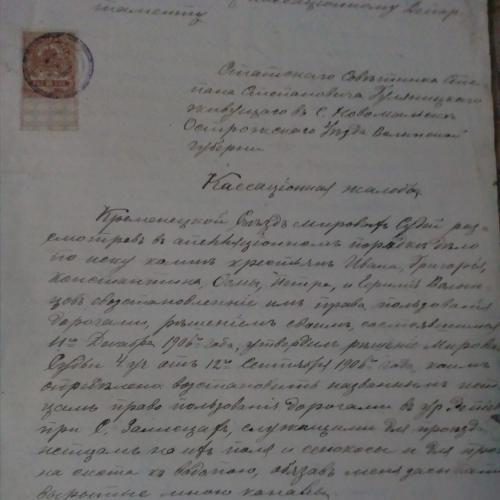 Кассационная жалоба 1906 г.