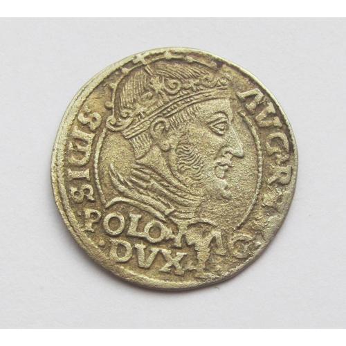 Грош, 1548, Сигизмунд II Август, Литва, Вильно R