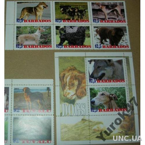 Барбадос Фауна Домашние животные Собаки Серия