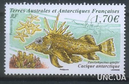 Франция ТААФ 2019 Фауна, Рыбы