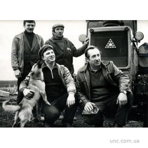 ФОТО ХРОНИКА ТАСС ДЛЯ ГАЗЕТЫ ТРАКТОР СОБАКА ОВЧАРК