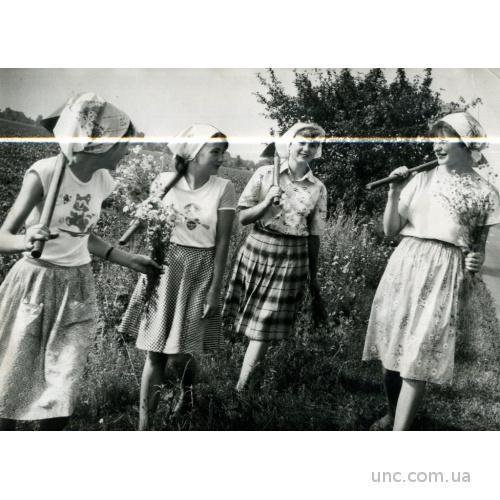 ФОТО ТАСС ДЛЯ ГАЗЕТЫ ЧЕРНИГОВ КОЛХОЗ ДЕВУШКА ЦВЕТЫ