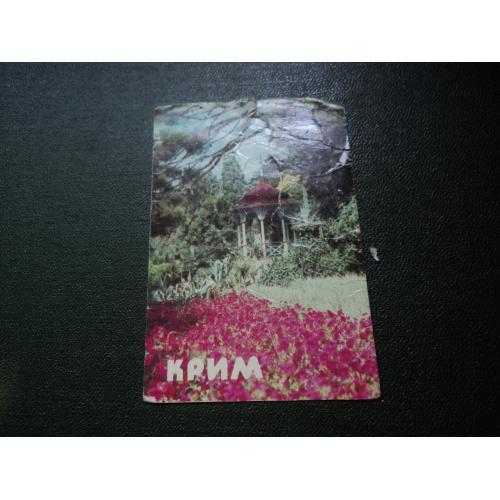 Крим. Нікітський ботанічний сад. 1986р.