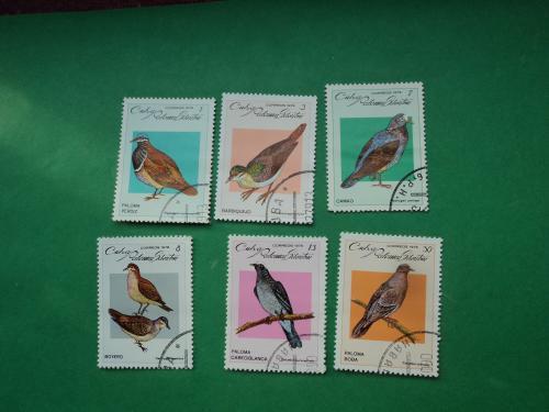 Куба 1979г. Птицы.Фауна.