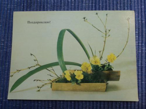 Поздоровляю! 1987р. Квіти. Композиція.