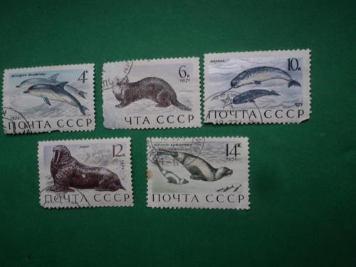 СССР 1971г. Морские млекопитающие.