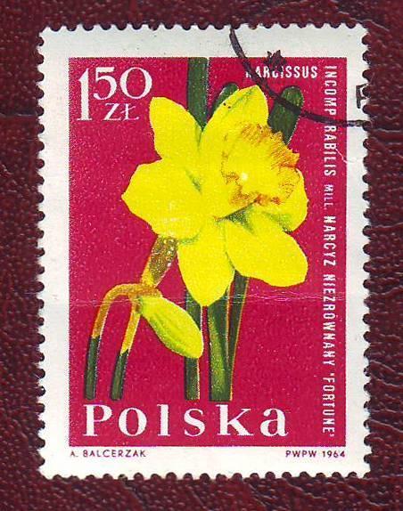 Флора Цветы 1964г.Польша