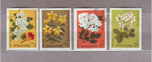 Флора.Цветы. 4 марки.Болгария.1981.