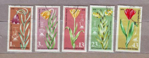 Флора.Цветы. 5 марок.Болгария.1978.