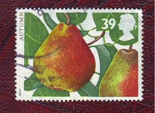 Флора Плоды Груша   1993г.   Великобритания