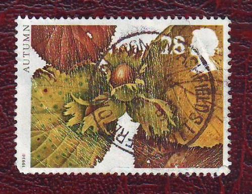 Флора Плоды Орехи   1993г.   Великобритания