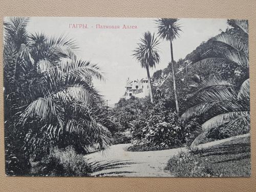 Старинная открытка Гагры. Пальмовая аллея.