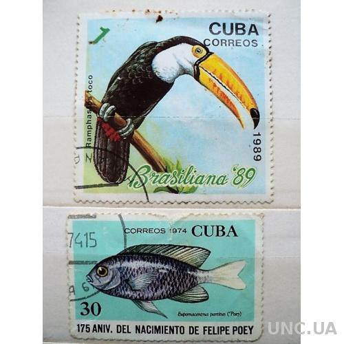 1974,Куба. Фауна. гаш.