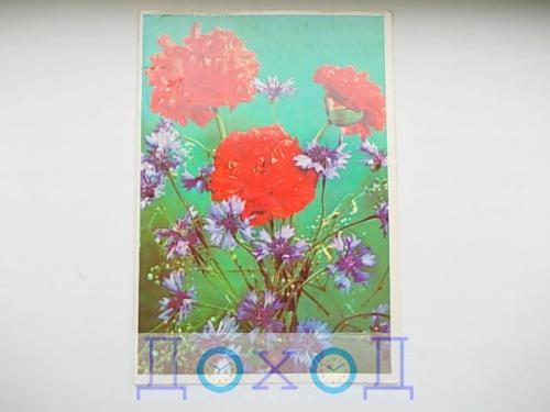 Открытка Приглашение Запрошення фото Кропивницкого  Днепропетровск 1980 145 х 210 мм №3