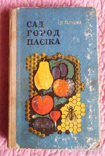 Сад, город, пасіка. Автор: І.Галушка