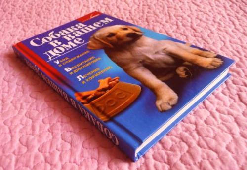 Собака в вашем доме. Уход и содержание.Воспитание и дрессировка. Лечение и кормление. Т. Руцкая