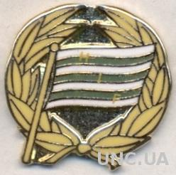 футбол.клуб Хаммарбю (Швеция), ЭМАЛЬ / Hammarby IF FF, Sweden football pin badge
