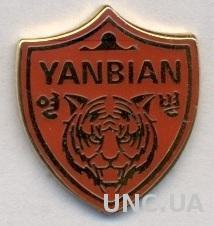 футбол.клуб Яньбянь Фуньде (Китай) ЭМАЛЬ /Yanbian Funde,China football pin badge