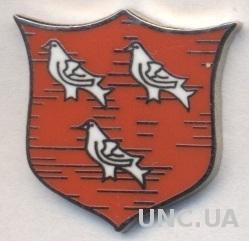 футбольный клуб Дандолк (Ирландия)4 ЭМАЛЬ /Dundalk FC,Ireland football pin badge