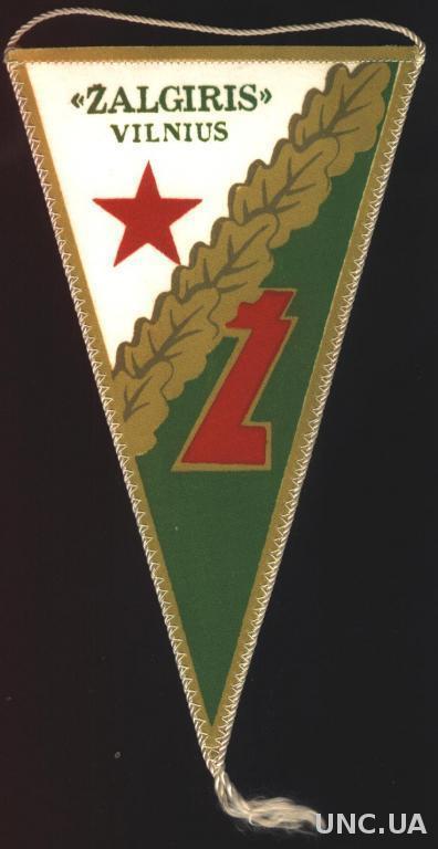 футбольный клуб Жальгирис Вильнюс ( СССР ), 21х12 см