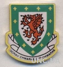 Уэльс, федерация футбола, тяжмет / Wales football federation enamel pin badge