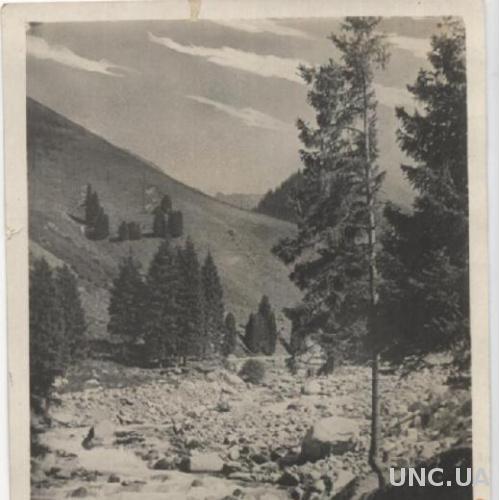 Старые открытки казахстана, машей