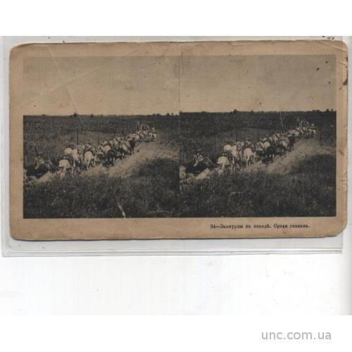 ПЕР. МИР.   Заамурцы в походе, Среди гаоляна. 1906