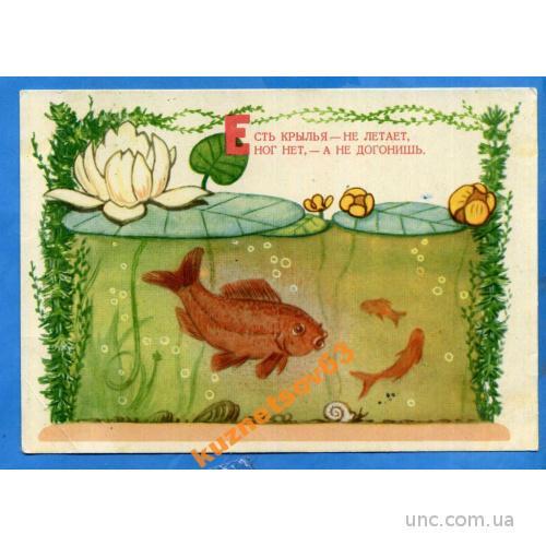 Сказка. Золотая рыбка ***