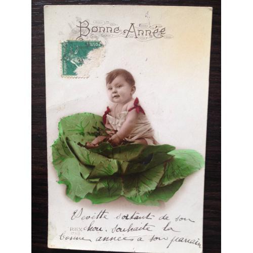 Французская фотооткрытка. С Новым годом! Малыш в капусте.