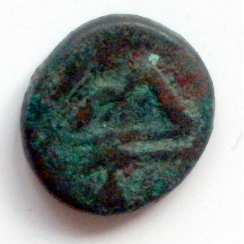 Монета северного причерноморья