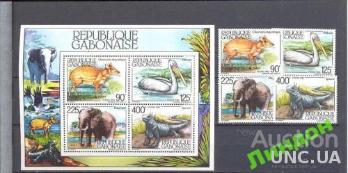 Габон 198 фауна Африки слон птицы ** о