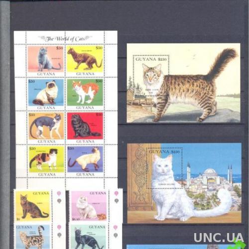 Гайана 1992 коты кошки фауна ** о