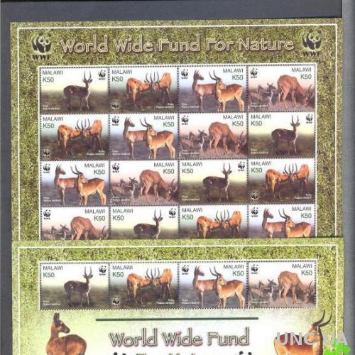 Малави фауна Африки ВВФ WWF антилопы ** о
