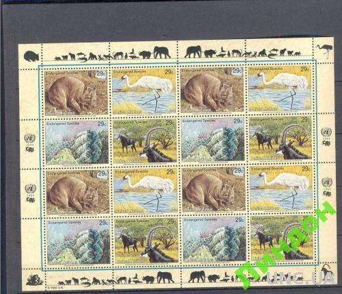 ООН 1993 морская фауна Африки птицы лист **