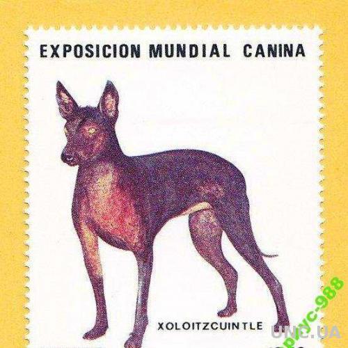 ФАУНА 1984 Мексика Животные Собаки Полн. серия**