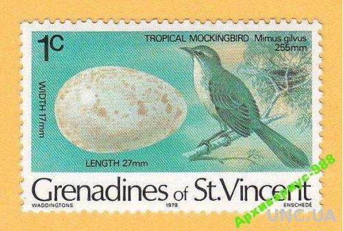 СЕНТ-ВИНСЕНТ 1978 ПТИЦЫ Животные ФАУНА 1м MNH**