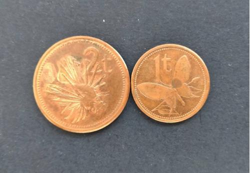 Подборка монет Папуа Новая Гвинея 2002 год. 2 монеты.