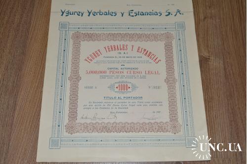 Акция. Ygurey Yerbales y Estancias S. A. 1926 год №813 (33) 38*30